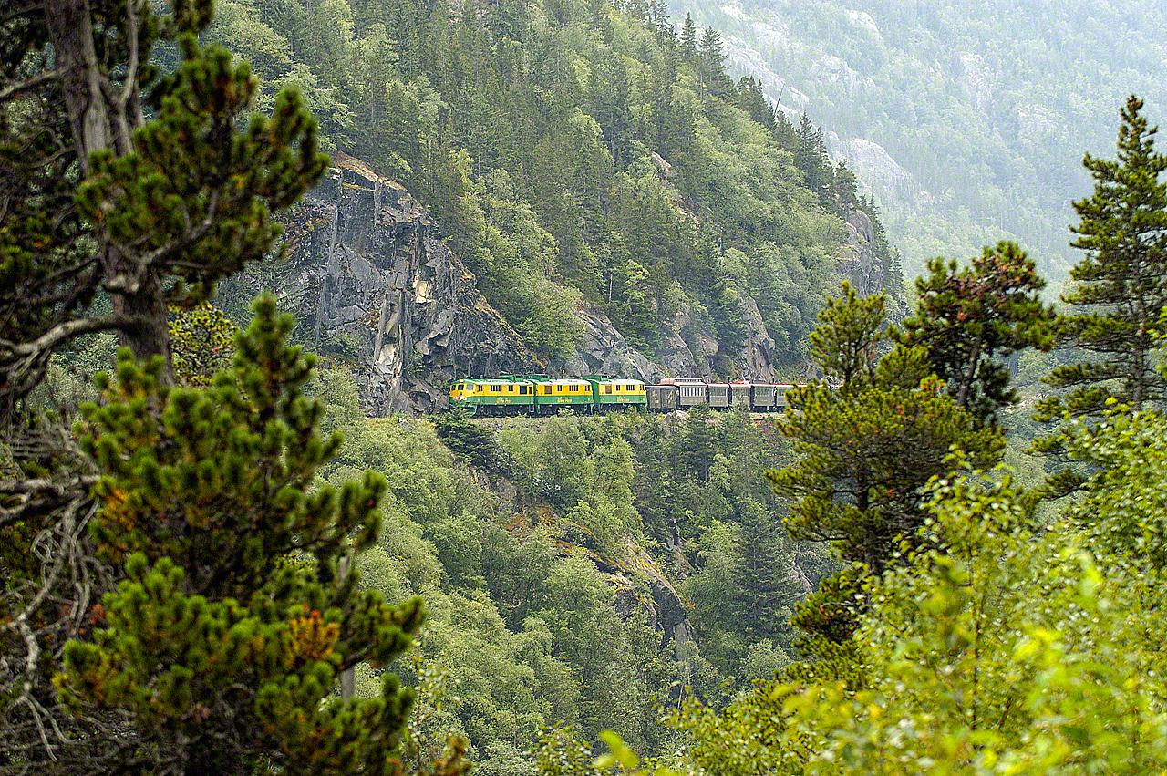 Train in Alaska